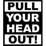 Custom Wall Decal Pull Your Head Out Picture Art Kids Boys Bedroom Pee