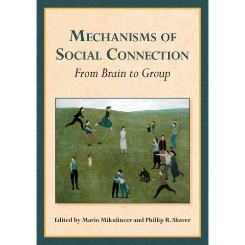 Mechanisms of Social Connection: From Brain to Group