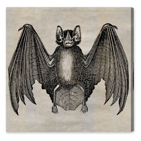Hatcher Ethan Bat Canvas Wall Art