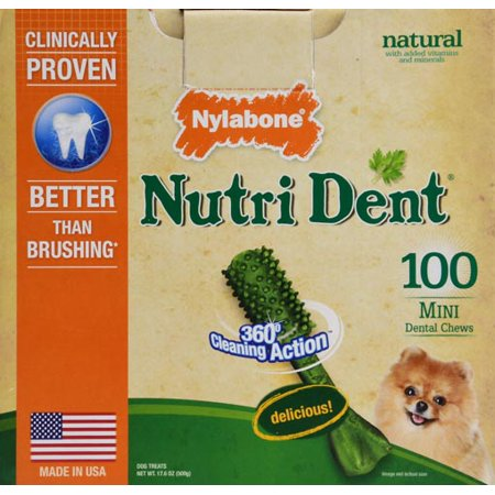 Nylabone Nutri Dent Mini Dog Dental Chews   100 Count