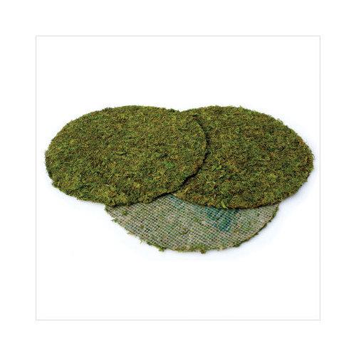 """Supermoss Moss Pot Toppers 12"""", 3/pkg, Green"""