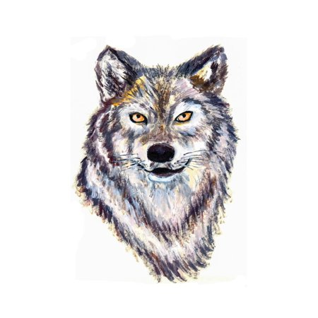 Oil Painting Wolf Head Print Wall Art By jim80