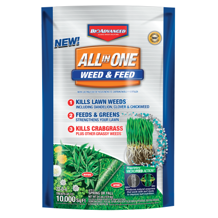BioAdvanced All-In-One Weed And Feed Granules 24 lb. Granules (10,000 sq. (Best Way To Weed And Feed Lawn)