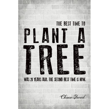 The Best Time To Plant A Tree (Chinese Proverb), motivational