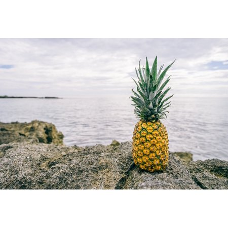Fresh Pineapple - LAMINATED POSTER Fruit Fresh Healthy Pineapple Fresh Fruit Food Poster Print 24 x 36