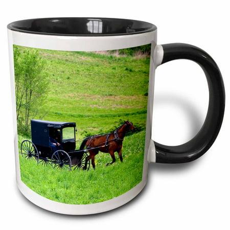 3dRose Amish farm with horse buggy near Berlin, Ohio - US36 DFR0018 - David R. Frazier - Two Tone Black Mug, 11-ounce