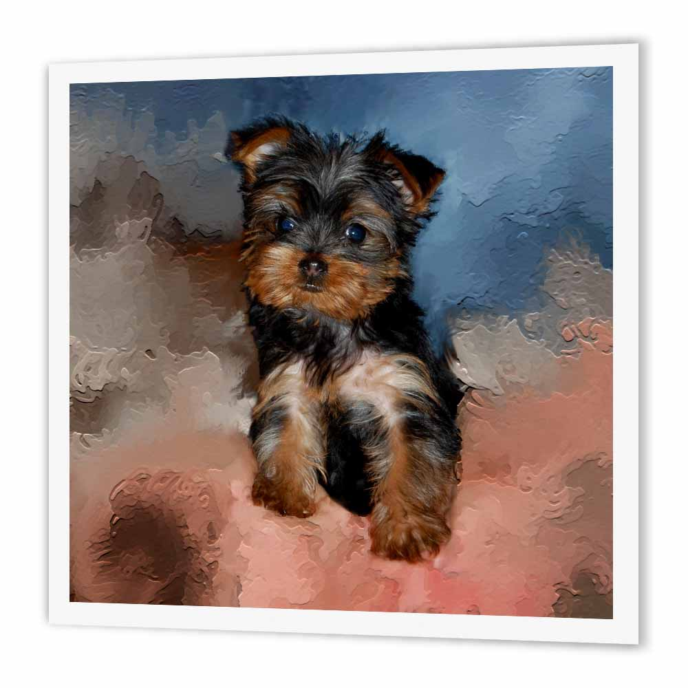 3drose Toy Yorkie Puppy Iron On Heat Transfer 10 By 10 Inch For