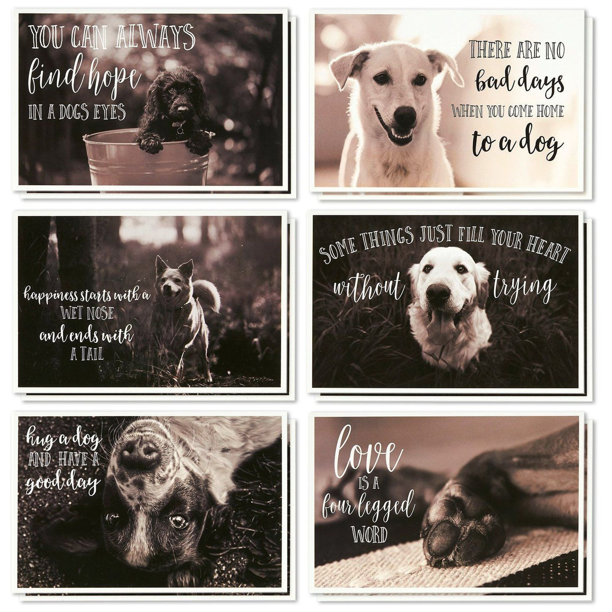 Set of 8. DOGS /& CATS and DOGS themed blank note cards