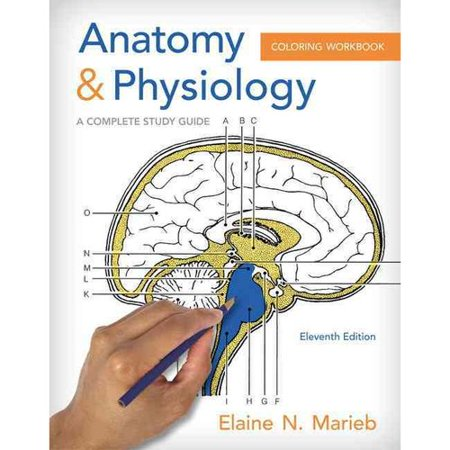 Anatomy and Physiology Coloring Workbook: A Complete Study Guide by