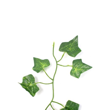12 Pcs Green Plastic Simulated Vine Plant Leaf Ornament 6ft for Festival Party - image 2 de 2