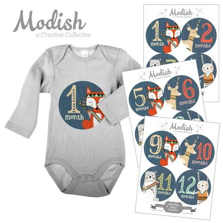 Modish Monthly Baby Stickers, Boy, Woodland Animals, Fox, Bear, Deer, Rabbit, Baby Photo Prop, Baby Shower Gift, Baby Book (Rabbit Photo Gift)