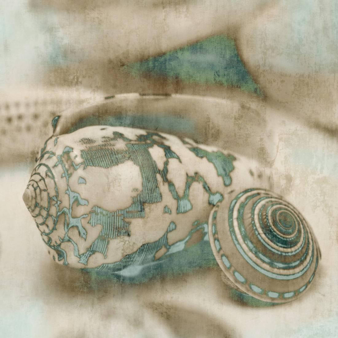 Coastal Gems I Art Print By John Seba by TOP ART