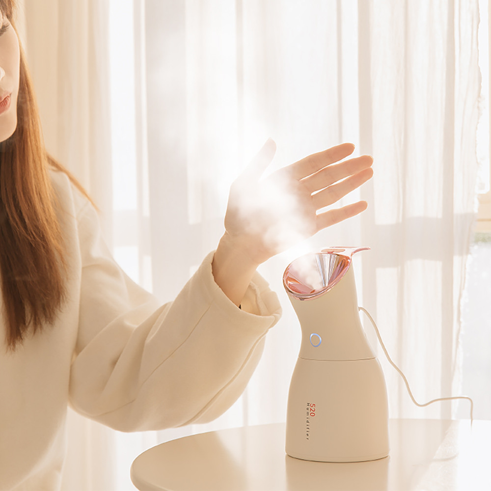 Home Office Humidifier Air Diffuser Purifier Atomizer With USB Interface BU