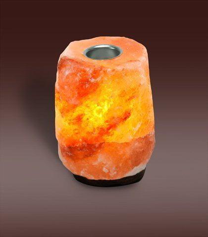 EVOLUTION SALT SALT LAMP 5LB ESSNT OIL