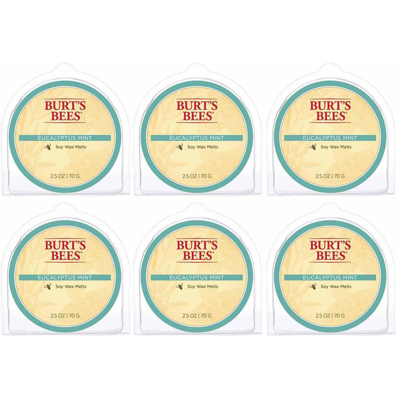 Burt's Bees Melts Eucalyptus Mint, Set of 6