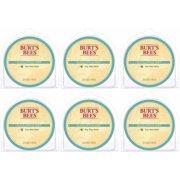 Burt's Bees Melts Eucalyptus Mint, Set of 6