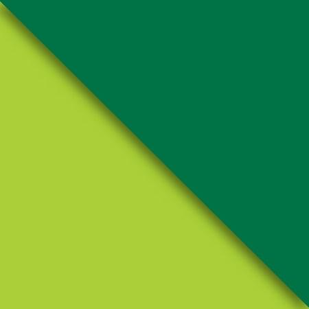 Jillson   Roberts Bulk Gift Wrap  Two Sided Kraft Lime   Hunter  1 2 Ream 417 X 30