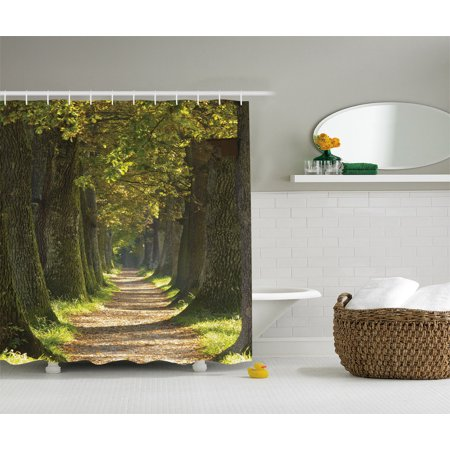 Vivid Environment Decor Alley With Oak Trees Scenic Perspective