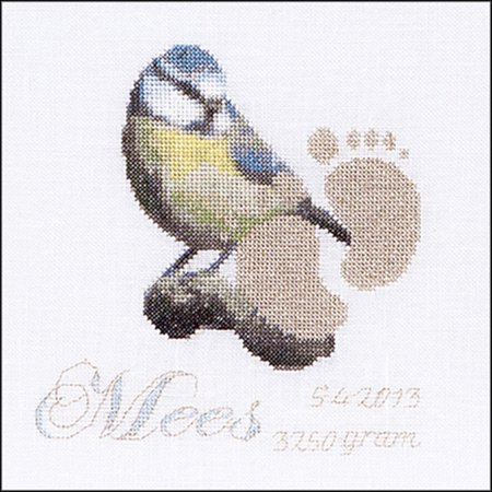 (Birth Sampler Mees On Aida Counted Cross Stitch Kit-5.75