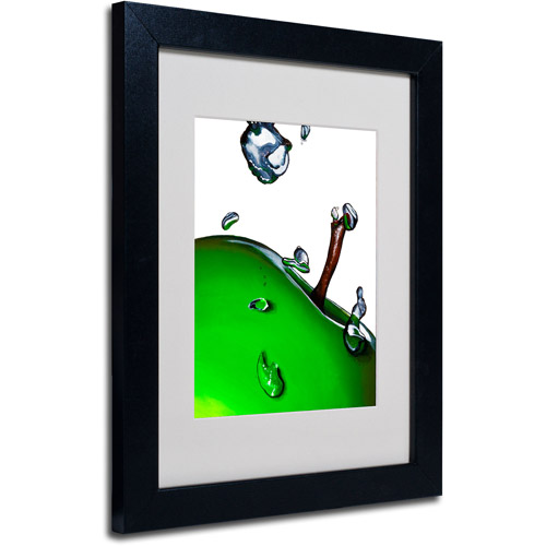 """Trademark Fine Art """"Granny Splash II"""" Framed Matted Art by Roderick Stevens"""