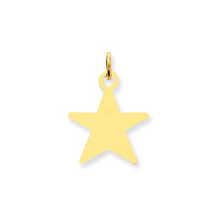 14K Yellow Gold .011 Gauge Star Disc Charm Pendant MSRP $142