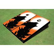 Raven Themed Cornhole Boards