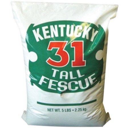 Barenbrug Kentucky 31 Tall Fescue Grass Seed, 5