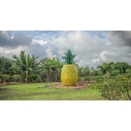 LAMINATED POSTER Oahu Dole Plantation Hawaii Pineapple Decoration Poster Print 24 x 36](Cheap Hawaiian Decorations)