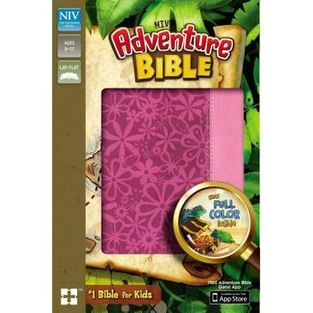 Adventure Bible, NIV (Revised) (Hardcover)