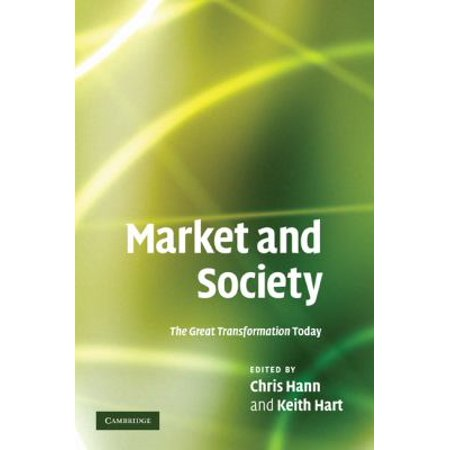 Market And Society  The Great Transformation Today