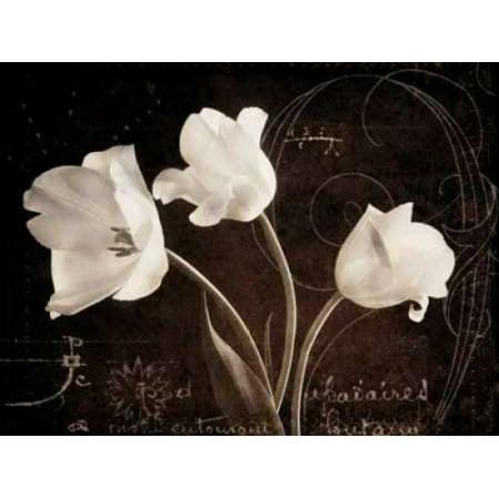 Garden Love Letter II Canvas Art - Amy Melious (18 x (Love Letter Art)