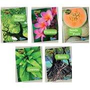 Capstone / Coughlan Pub HE-9781410962843 Plant Parts Book Set Of 5