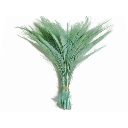 50 Pieces - Aqua Green Bleached Peacock Swords Cut Wholesale Feathers (Bulk) (Bulk Swords)