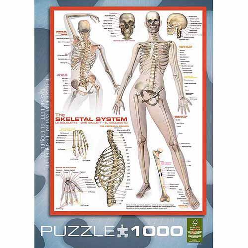 Eurographics le squelette puzzle 1000 pieces