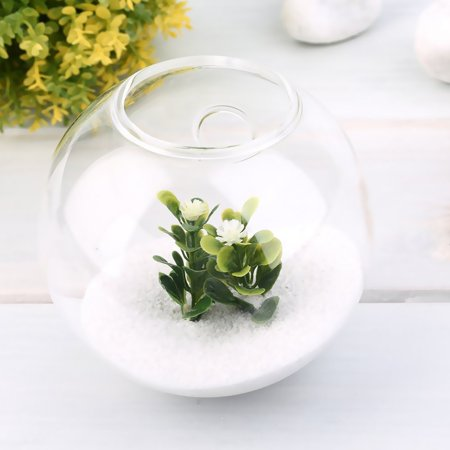 Holiday Deal! Christmas Gift! Today# Popular 1PC High Borosilicate Glass Hanging Glass Flower Planter Vase Terrarium Container Home Garden Ball Decor