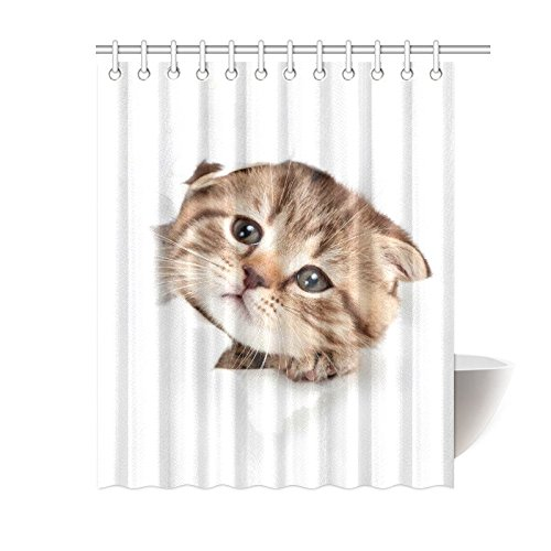 GCKG Funny Kitten Shower Curtain Cat Looking Out Paper Hole Polyester Fabric Bathroom Sets 60x72 Inches