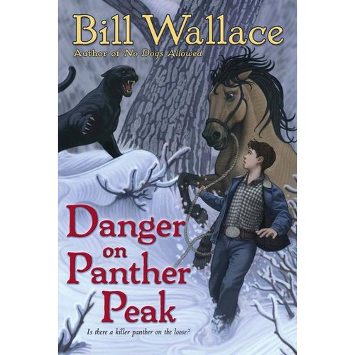 Danger on Panther Peak