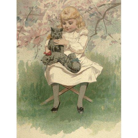 Mammys Baby c1890 Three kittens Stretched Canvas - Ida Waugh (18 x 24)