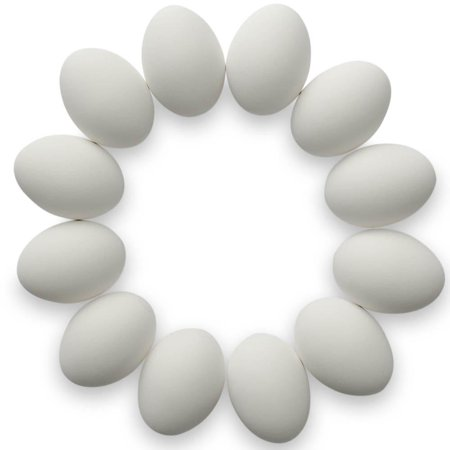 Set of 12 White Ceramic Eggs 2.5 Inches - Ceramic Eggs
