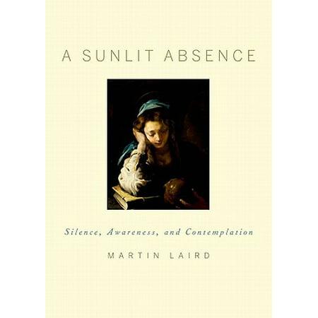 A Sunlit Absence (Sunlit Daisies)