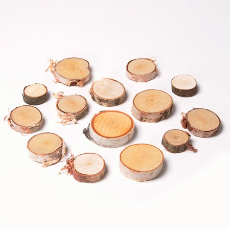 0.25 Slice - Wilson Birch Wood Slices: 0.25 to 0.88 inches, 10 ounces