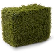 National Tree Co. Juniper Rectangle Storage Box/Cover Topiary Statue