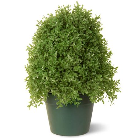 National Tree Company 15 Inch Boxwood Tree With Green Pot