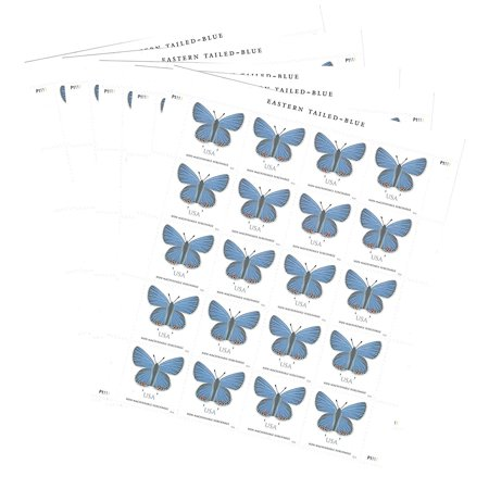 Eastern Tailed-Blue 5 Sheets of 20 stamps two-ounce Forever USPS Postage stamps, greeting card, square envelopes, Wedding stamps (100 Stamps)