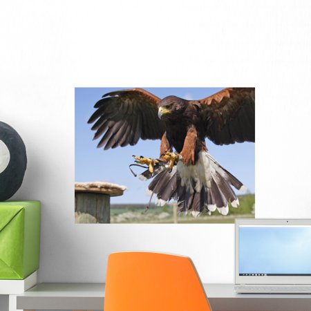 Fenton Bird Prey Centre Wall Mural by Wallmonkeys Peel and Stick Graphic (18 in W x 14 in H) (Mural Center)