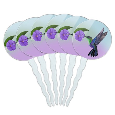 Hummingbird Crowned Woodnymph Purple Violet Cupcake Picks Toppers Decoration Set of 6