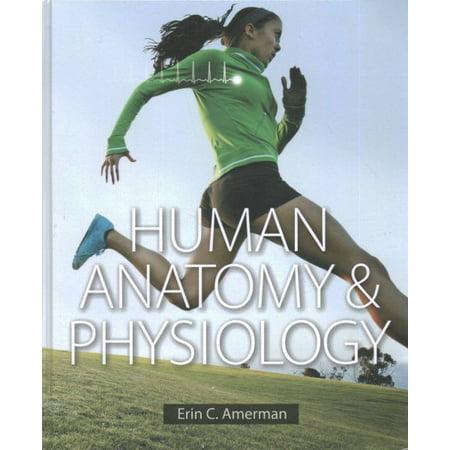 Human Anatomy & Physiology + Human Anatomy & Physiology Laboratory Manual, Fetal Pig version, Photographic Atlas for Anatomy & (Photographic Lab)