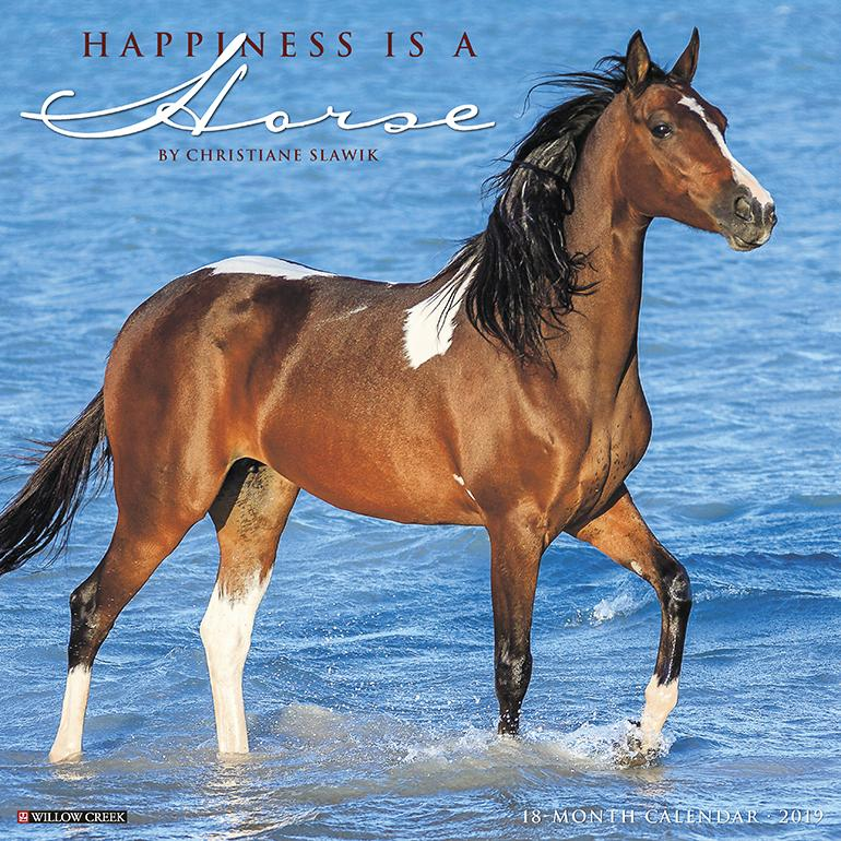 Happiness Is a Horse 2019 Wall Calendar (Other)