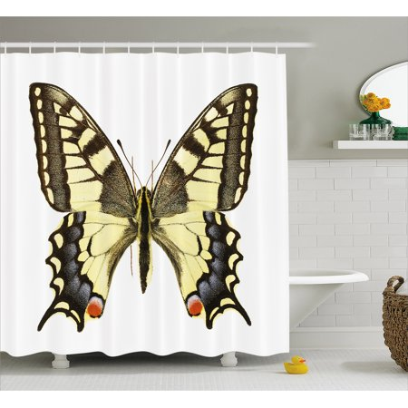 Swallowtail Butterfly Shower Curtain Yellow Papilio Machaon Old World Wildlife Biology Fabric Bathroom
