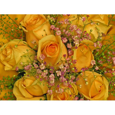 LAMINATED POSTER Roses Birthday Greeting Flowers Yellow Bouquet Poster Print 24 x 36